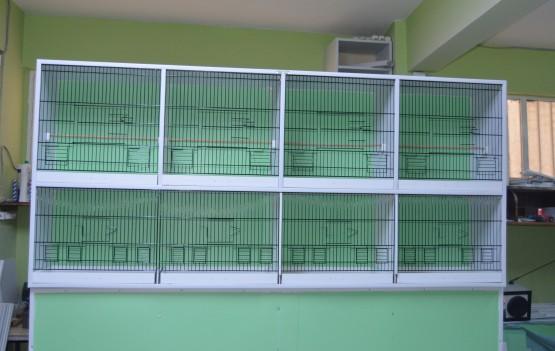 Özel Kafesler – 4